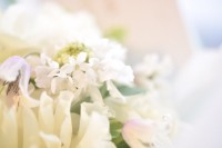 開店祝い、お花